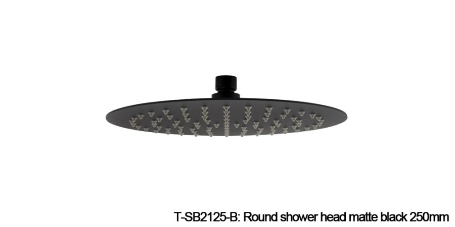 Round shower head black